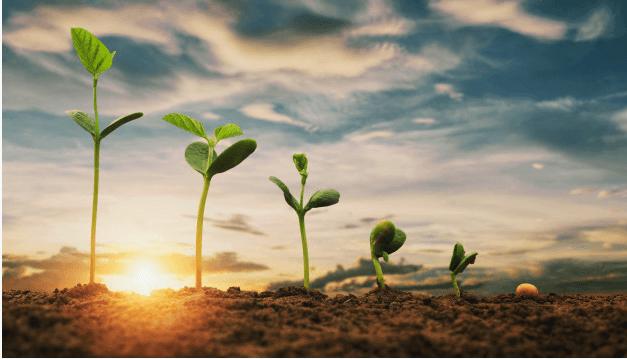 NLP ،کلید طلایی تغییر در زندگی برای رسیدن به موفقیت
